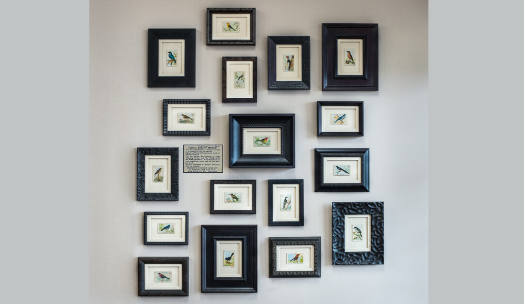 """Useful Birds of America"" Wall Gallery"