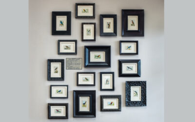"""Useful Birds of America"" Wall Gallery"